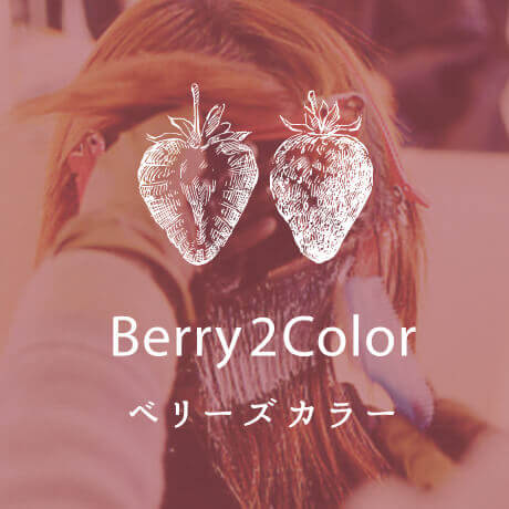 Berry2color